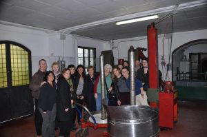 Olive mill tour in Italy