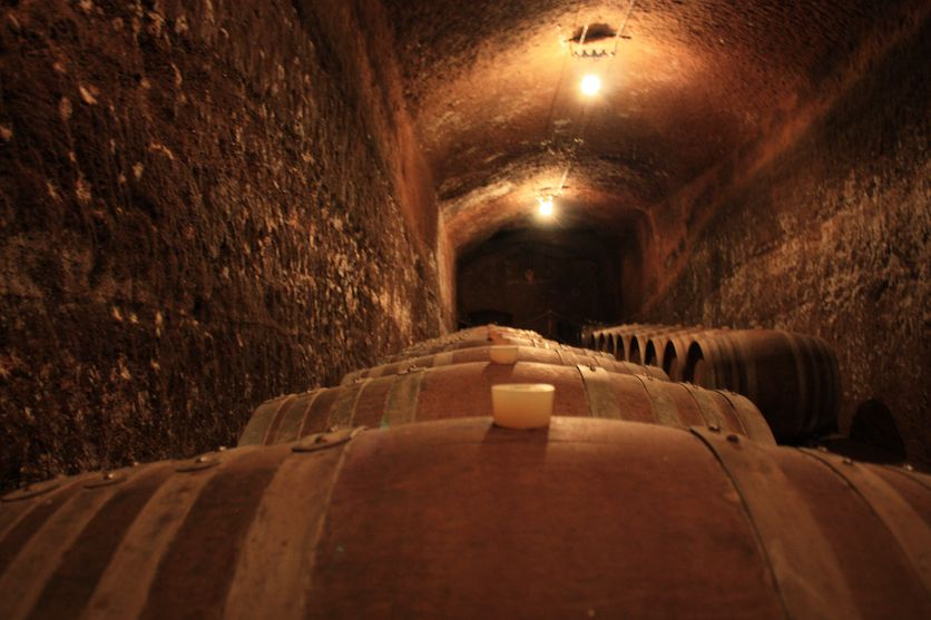 winery tour Viterbo