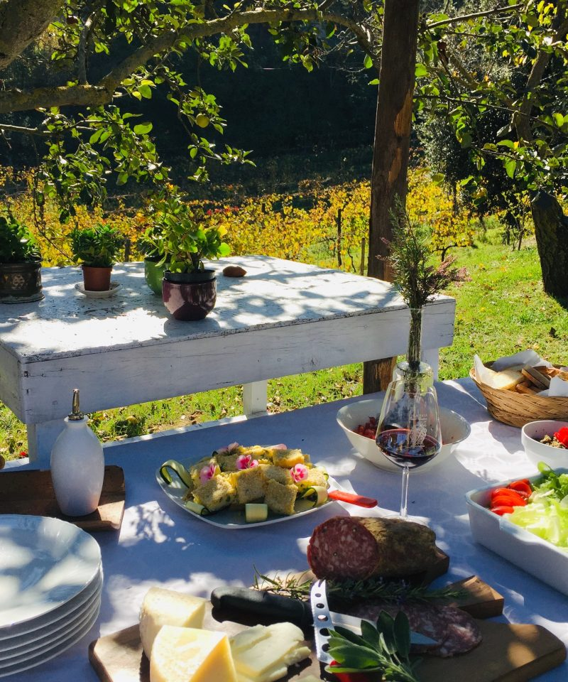 lunch in vineyard winery tour tuscany