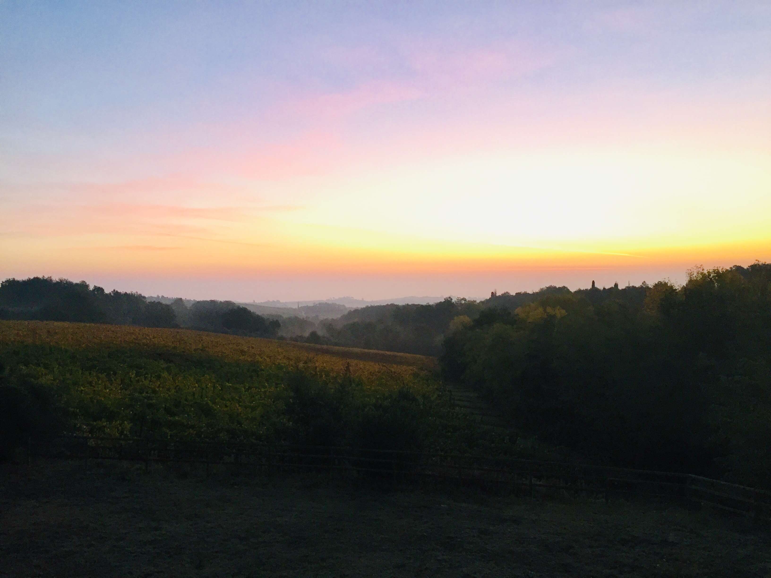 Tuscany vineyard sunrise customized itineraries Italy