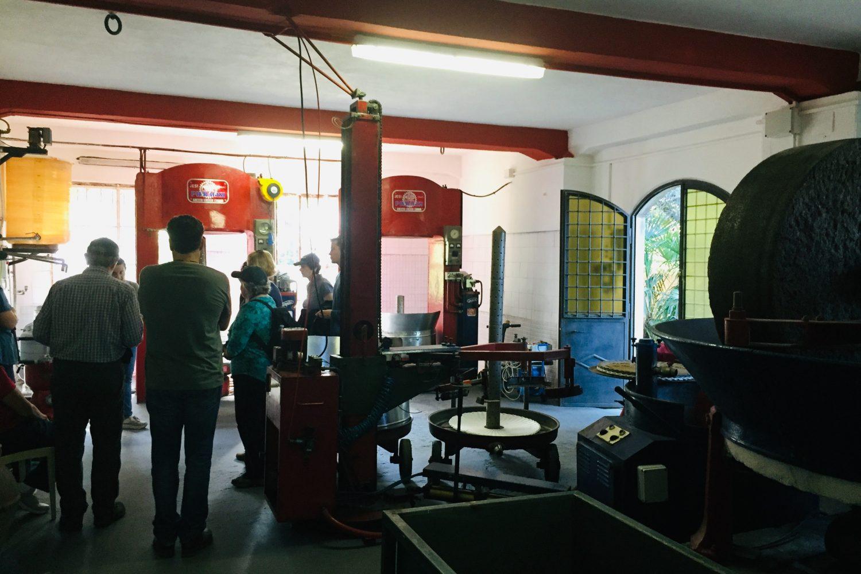 visit olive press mill Umbria
