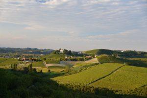 Barbaresco private wine tour