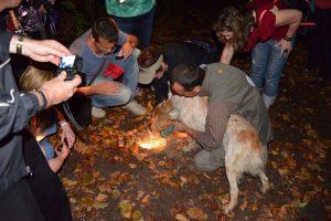 Night Truffle Huting Italy